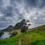 Croisière en yacht en Nouvelle-Zélande pour une belle immersion en nature